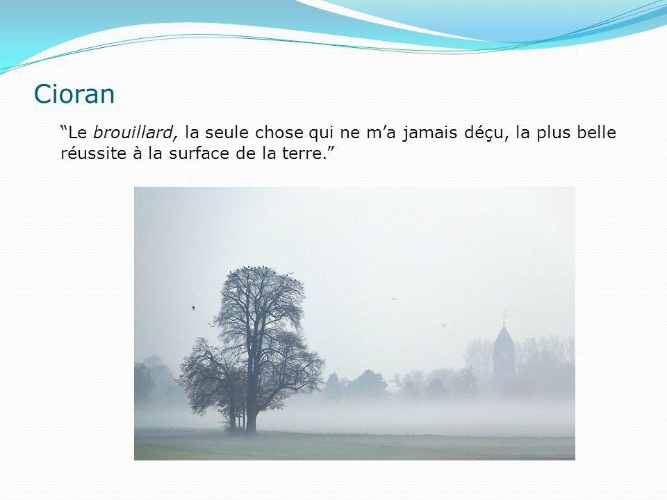 Cioran Le brouillard, la seule chose qui ne m'a jamais déçu, la plus belle réussite à la surface de la terre.