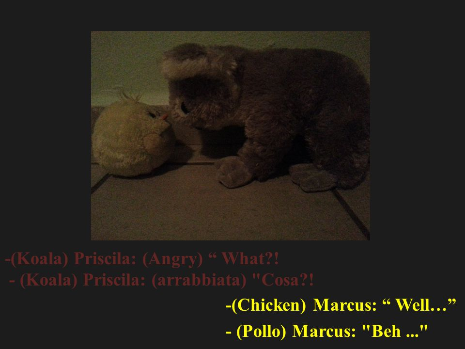 -(Koala) Priscila: (Angry) What . - (Koala) Priscila: (arrabbiata) Cosa .