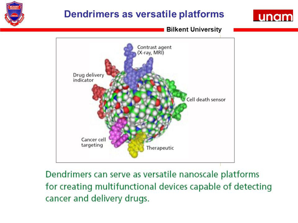 Dendrimers as versatile platforms Bilkent University