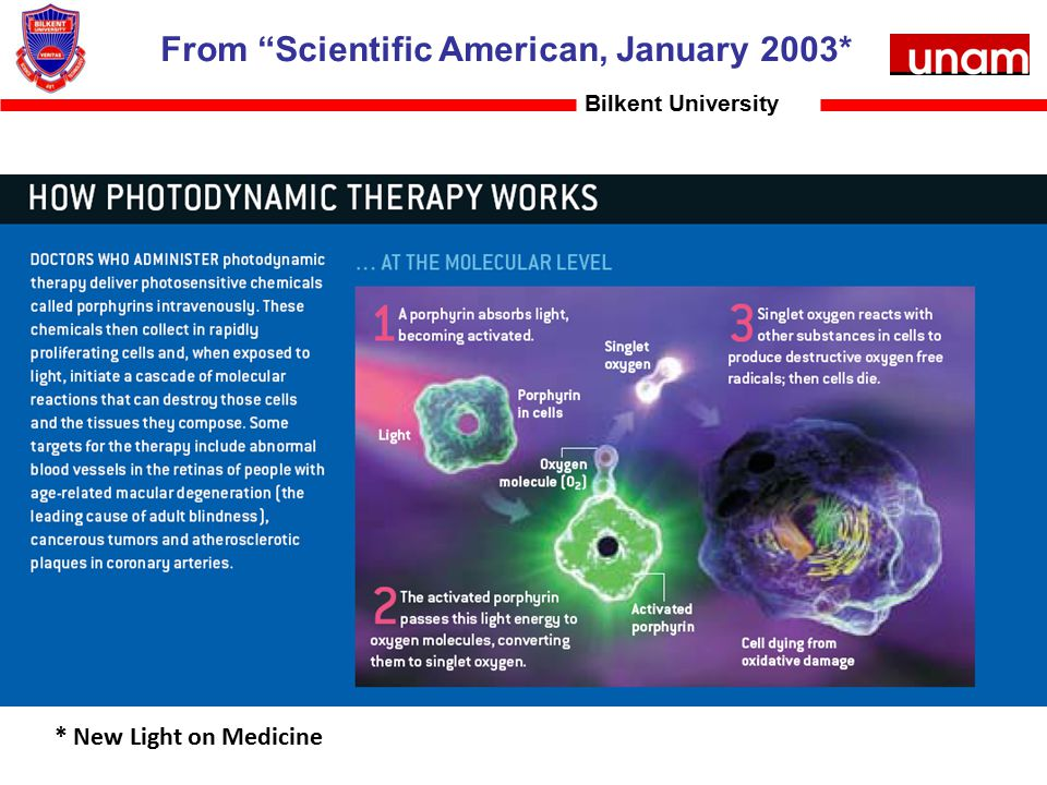 "From ""Scientific American, January 2003* Bilkent University * New Light on Medicine"