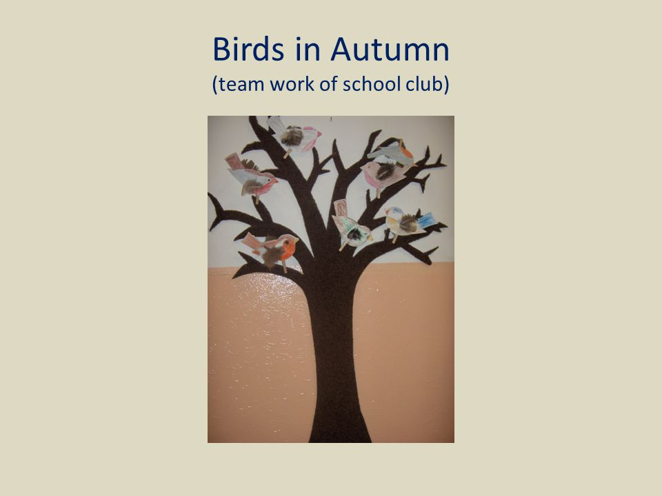 Birds in Autumn (team work of school club)