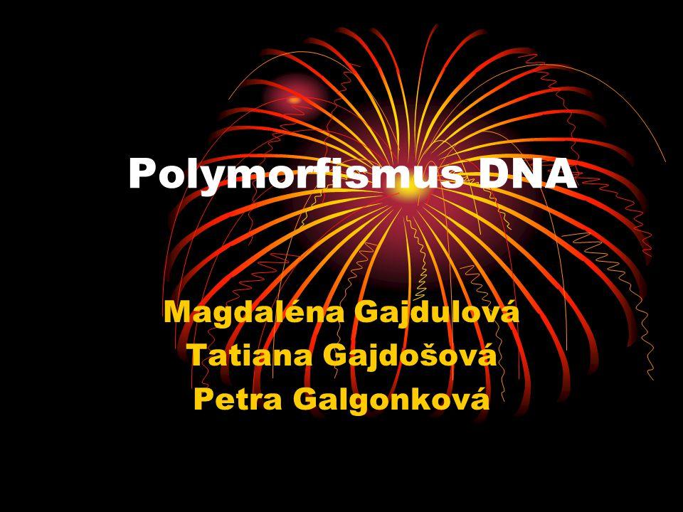 Polymorfismus DNA Magdaléna Gajdulová Tatiana Gajdošová Petra Galgonková