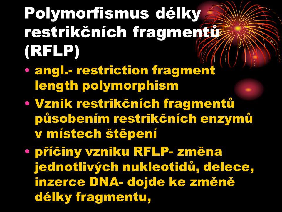 Polymorfismus délky restrikčních fragmentů (RFLP) angl.- restriction fragment length polymorphism Vznik restrikčních fragmentů působením restrikčních enzymů v místech štěpení příčiny vzniku RFLP- změna jednotlivých nukleotidů, delece, inzerce DNA- dojde ke změně délky fragmentu,