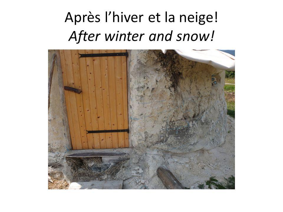 Après l'hiver et la neige! After winter and snow!