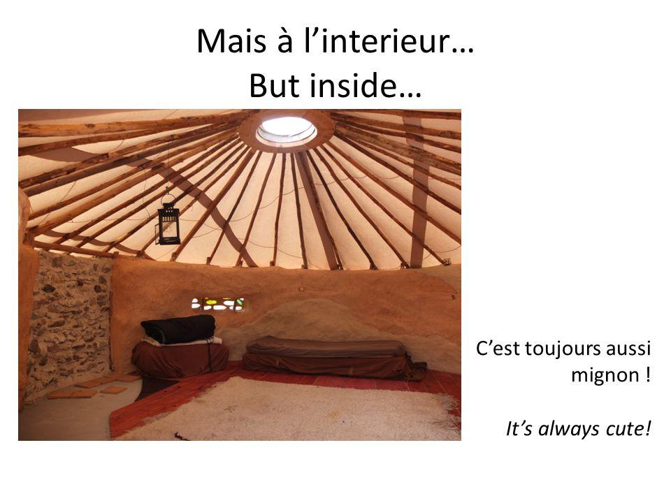 Mais à l'interieur… But inside… C'est toujours aussi mignon ! It's always cute!