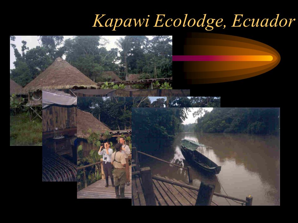 What is an Ecolodge.