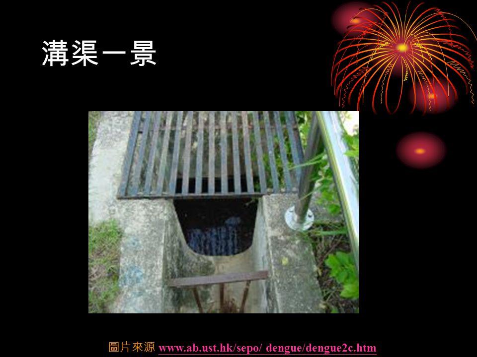 溝渠一景 圖片來源 www.ab.ust.hk/sepo/ dengue/dengue2c.htmwww.ab.ust.hk/sepo/ dengue/dengue2c.htm