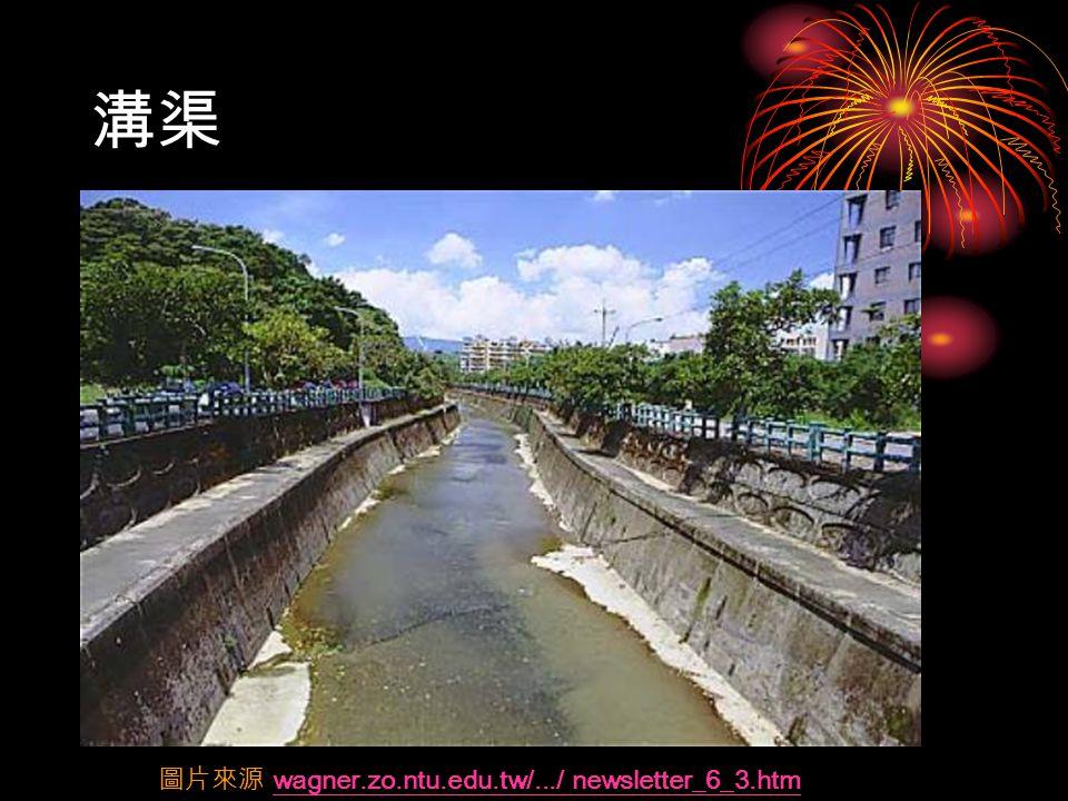 溝渠 圖片來源 wagner.zo.ntu.edu.tw/.../ newsletter_6_3.htmwagner.zo.ntu.edu.tw/.../ newsletter_6_3.htm