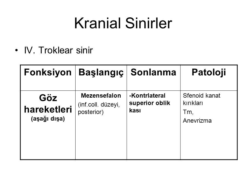Kranial Sinirler IV. Troklear sinir FonksiyonBaşlangıçSonlanmaPatoloji Göz hareketleri (aşağı dışa) Mezensefalon (inf.coll. düzeyi, posterior) -Kontrl