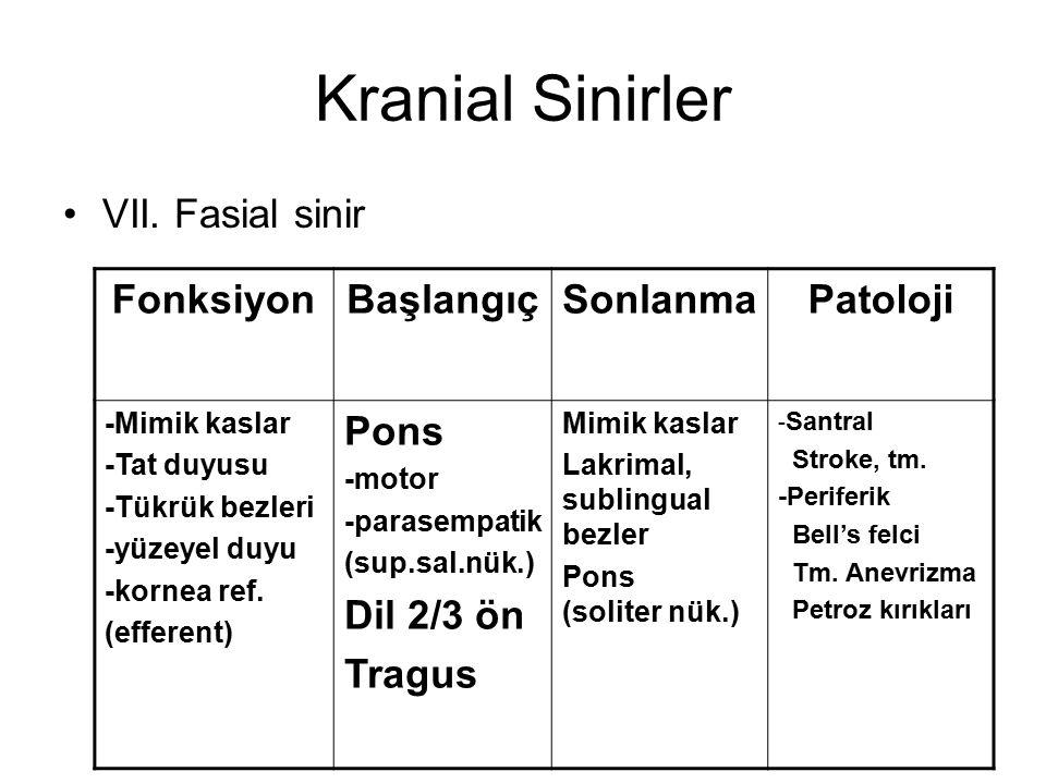 Kranial Sinirler VII. Fasial sinir FonksiyonBaşlangıçSonlanmaPatoloji -Mimik kaslar -Tat duyusu -Tükrük bezleri -yüzeyel duyu -kornea ref. (efferent)