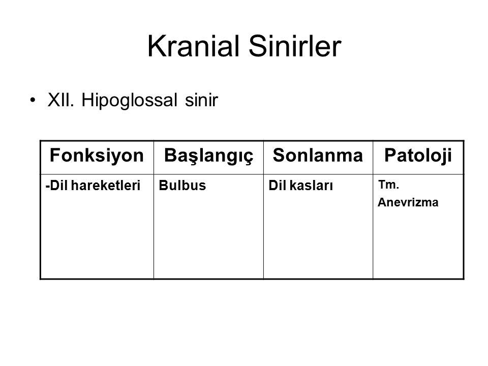 Kranial Sinirler XII. Hipoglossal sinir FonksiyonBaşlangıçSonlanmaPatoloji -Dil hareketleriBulbusDil kasları Tm. Anevrizma