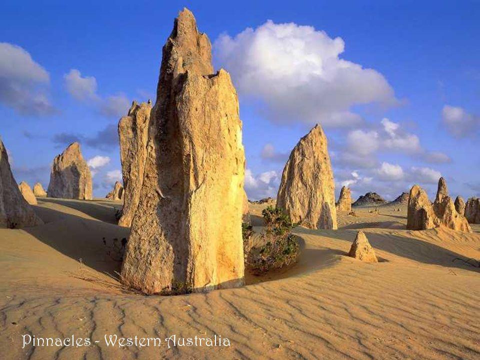 Pinnacles - Western Australia