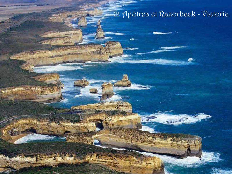 12 Apôtres et Razorback - Victoria
