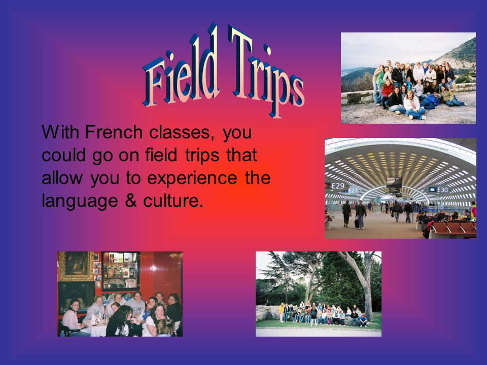 With French classes, you could go on field trips that allow you to experience the language & culture.