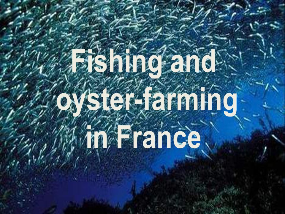 Fishing and oyster-farming in France