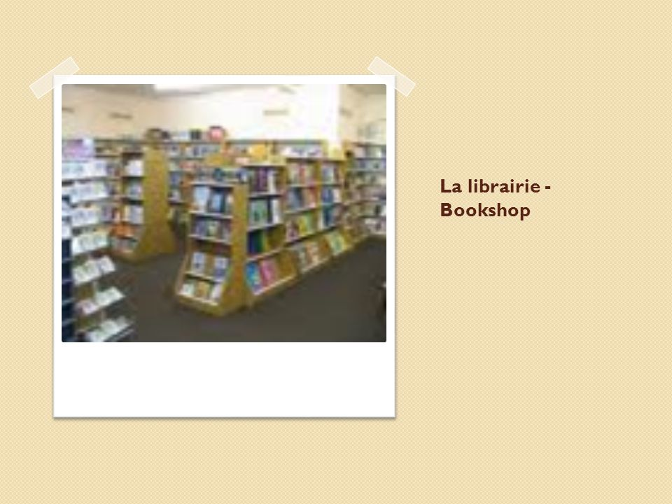La librairie - Bookshop