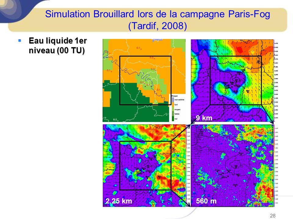 Simulation Brouillard lors de la campagne Paris-Fog (Tardif, 2008)  Eau liquide 1er niveau (00 TU) 28 560 m2.25 km 9 km