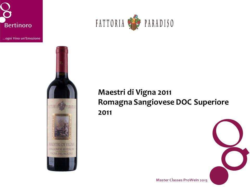 Maestri di Vigna 2011 Romagna Sangiovese DOC Superiore 2011 Master Classes ProWein 2013