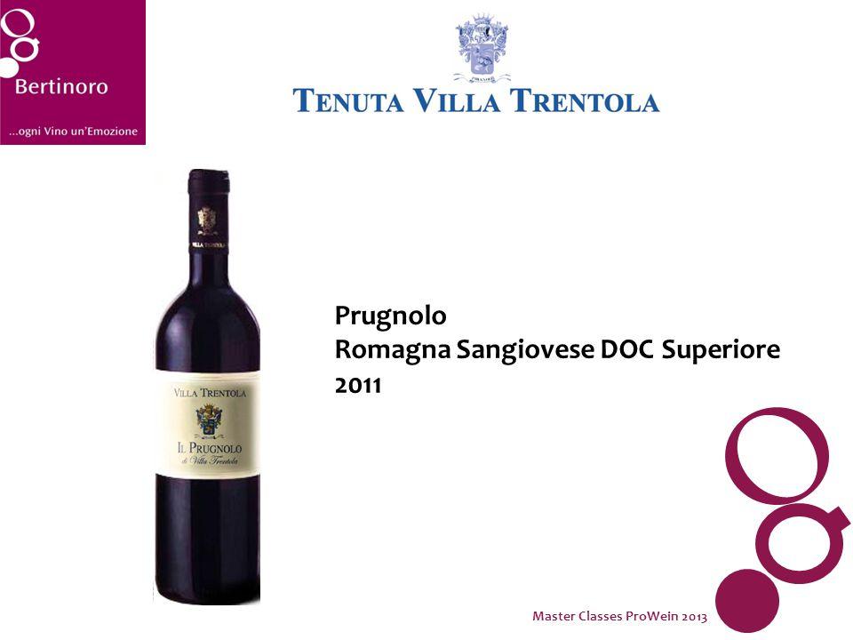 Prugnolo Romagna Sangiovese DOC Superiore 2011 Master Classes ProWein 2013
