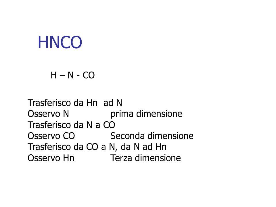 HNCO H – N - CO Trasferisco da Hn ad N Osservo N prima dimensione Trasferisco da N a CO Osservo CO Seconda dimensione Trasferisco da CO a N, da N ad Hn Osservo Hn Terza dimensione