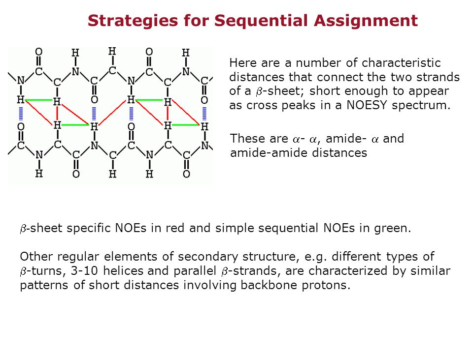 Strategies for Sequential Assignment Here are a number of characteristic distances that connect the two strands of a -sheet; short enough to appear as cross peaks in a NOESY spectrum.