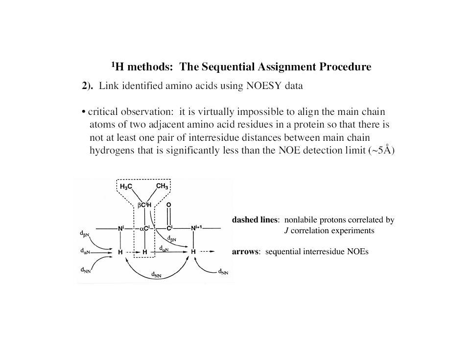 Sequenza primaria Libreria di aminoacidi Legame peptidico 180° Distanze tra protoni intraresiduo Distanze tra protoni di residui consecutivi Distanze tra protoni di residui a breve distanza (i,i+4) Angoli diedri  Distanze tra prootni a madio e lungo raggio