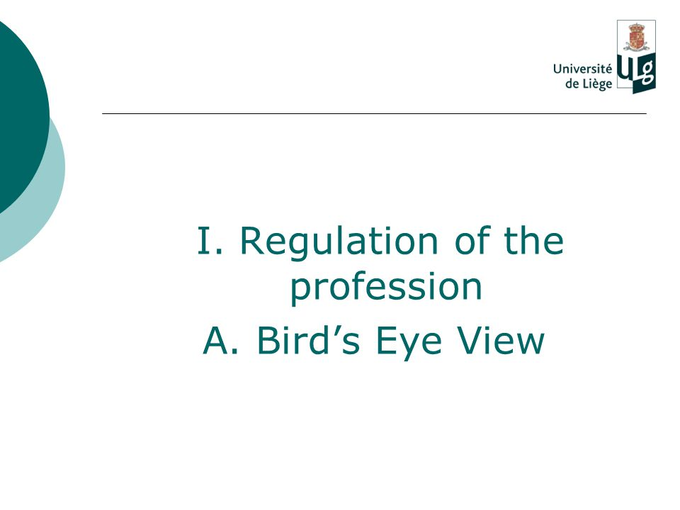 I. Regulation of the profession A. Bird's Eye View