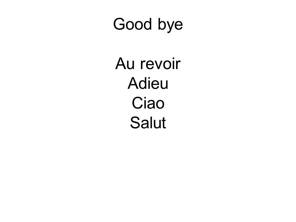 Good bye Au revoir Adieu Ciao Salut