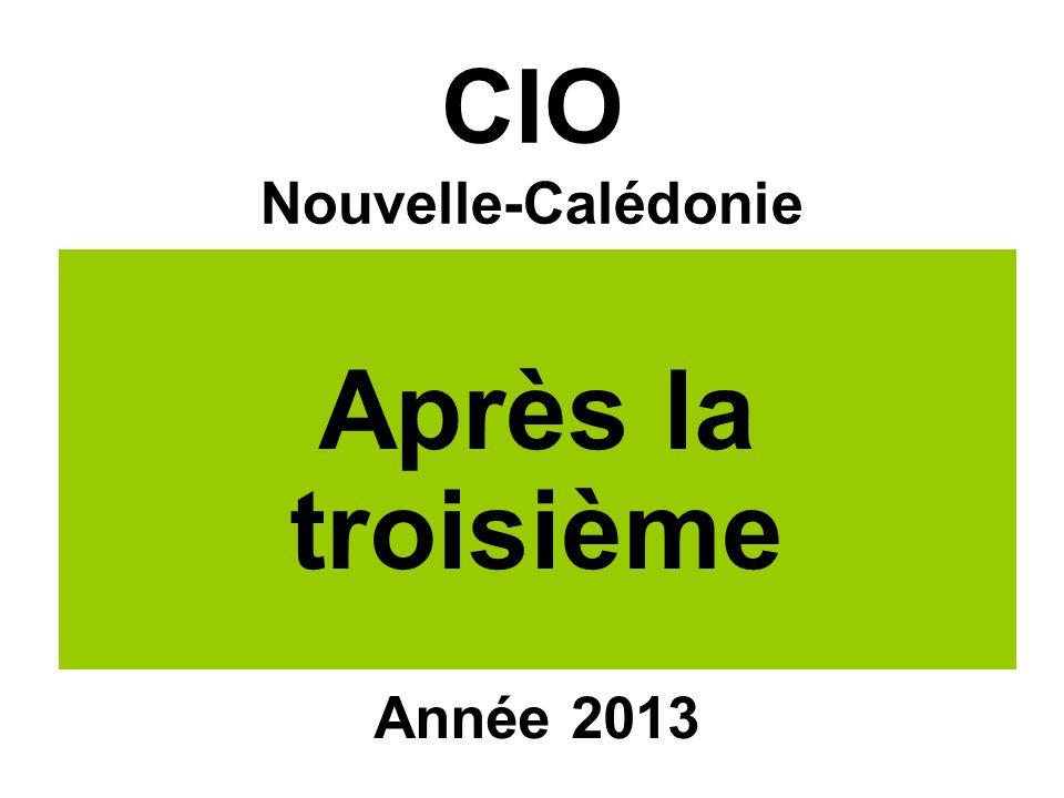 CIO Nouvelle-Calédonie Après la troisième Année 2013