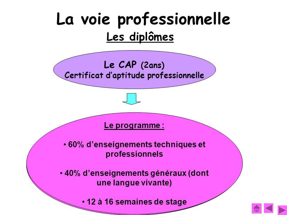 Et après :  Entrer dans la vie professionnelle  Se spécialiser en préparant une mention complémentaire par exemple Objectif : Se former à un métier précis (ex : mécanicien, électricien, coiffeur, etc.) Le programme : 60% d'enseignements techniques et professionnels 40% d'enseignements généraux (dont une langue vivante) 12 à 16 semaines de stage La voie professionnelle Les diplômes Le CAP (2ans) Certificat d'aptitude professionnelle