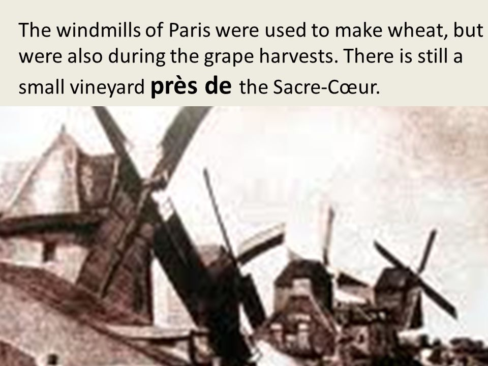 The windmills of Paris were used to make wheat, but were also during the grape harvests.