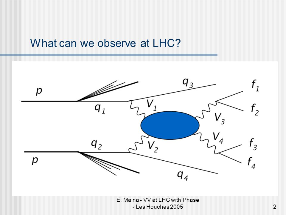 E. Maina - VV at LHC with Phase - Les Houches 20052 What can we observe at LHC