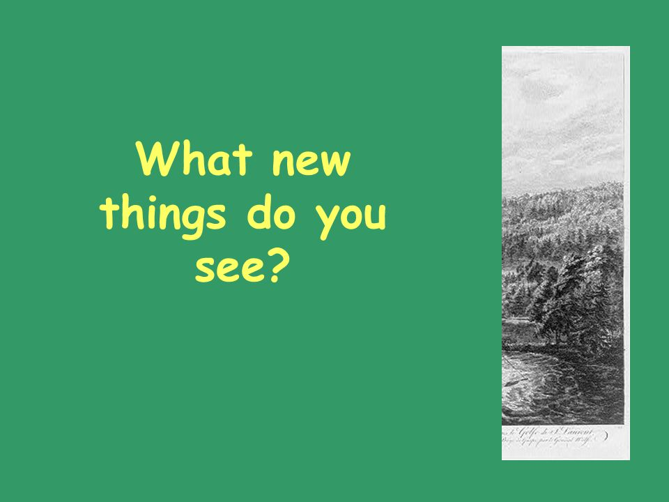 What new things do you see?