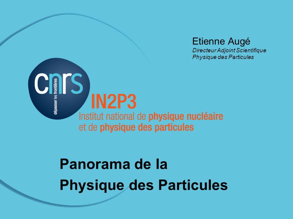 Conseil Scientifique de l IN2P3, 5 mai 2011 Etienne Augé Directeur Adjoint Scientifique Physique des Particules Panorama de la Physique des Particules