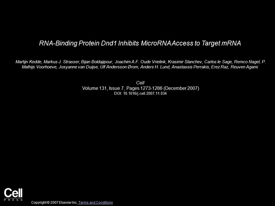 RNA-Binding Protein Dnd1 Inhibits MicroRNA Access to Target mRNA Martijn Kedde, Markus J.