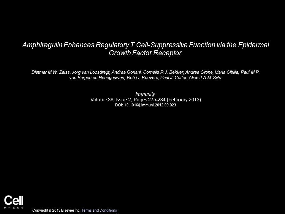 Amphiregulin Enhances Regulatory T Cell-Suppressive Function via the Epidermal Growth Factor Receptor Dietmar M.W.