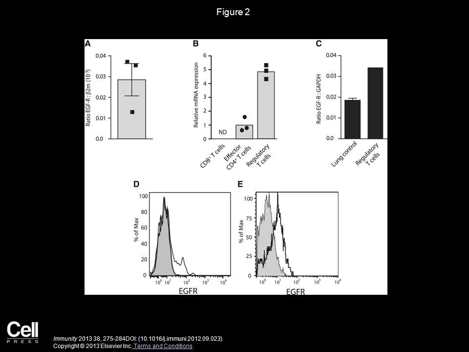 Figure 2 Immunity 2013 38, 275-284DOI: (10.1016/j.immuni.2012.09.023) Copyright © 2013 Elsevier Inc.
