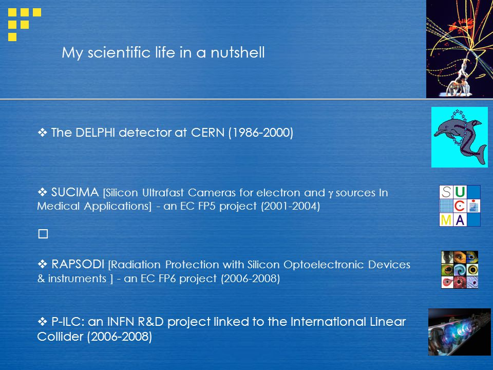 The DELPHI detector at CERN (1986-2000)  SUCIMA [Silicon Ultrafast Cameras for electron and  sources In Medical Applications] - an EC FP5 project (2001-2004)  RAPSODI [Radiation Protection with Silicon Optoelectronic Devices & instruments ] - an EC FP6 project (2006-2008)  P-ILC: an INFN R&D project linked to the International Linear Collider (2006-2008) My scientific life in a nutshell