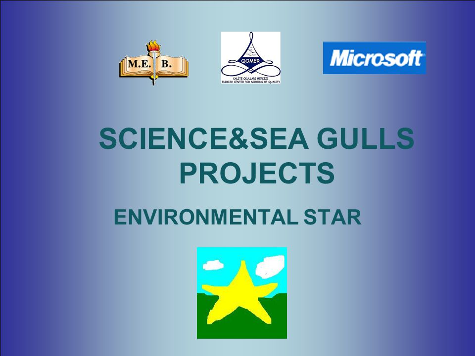 ENVIRONMENTAL STAR SCIENCE&SEA GULLS PROJECTS