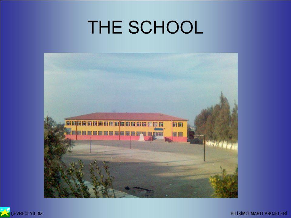 ÇEVRECİ YILDIZ BİLİŞİMCİ MARTI PROJELERİ THE SCHOOL