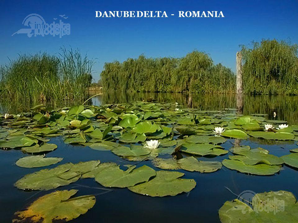 TULCEA - ROMANIA