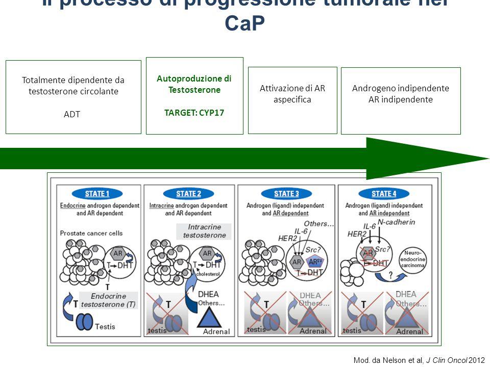 Mod. da Nelson et al, J Clin Oncol 2012 Il processo di progressione tumorale nel CaP Autoproduzione di Testosterone TARGET: CYP17 Attivazione di AR as