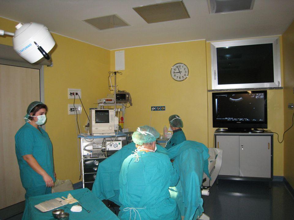 IOGENESI Centro di Medicina della Riproduzione B