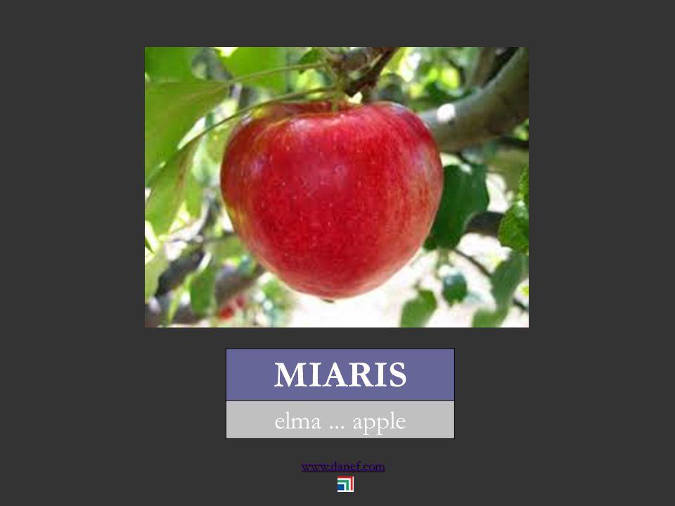 www.danef.com MARQO dut... mulberry