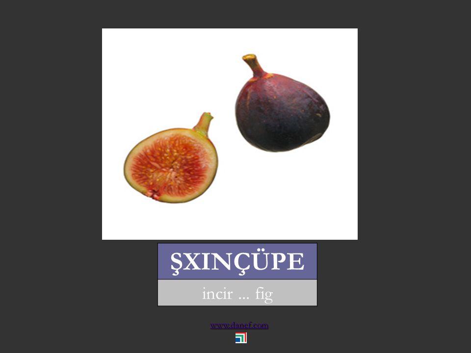 www.danef.com ŞINDIRĞO kiraz... cherry