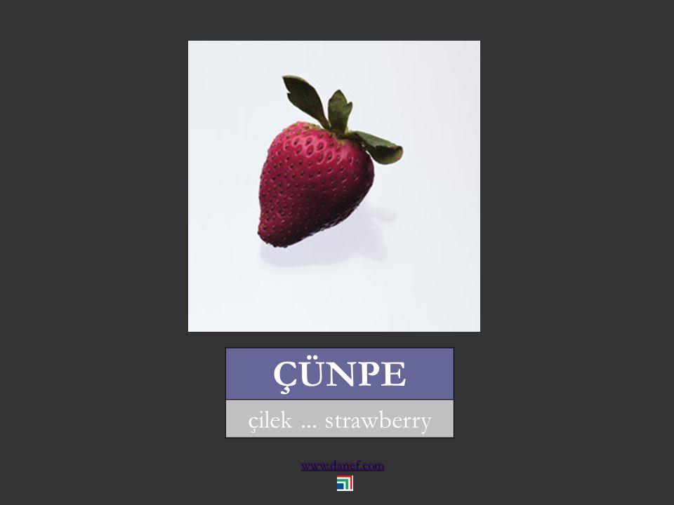 www.danef.com AYWE ayva... quince