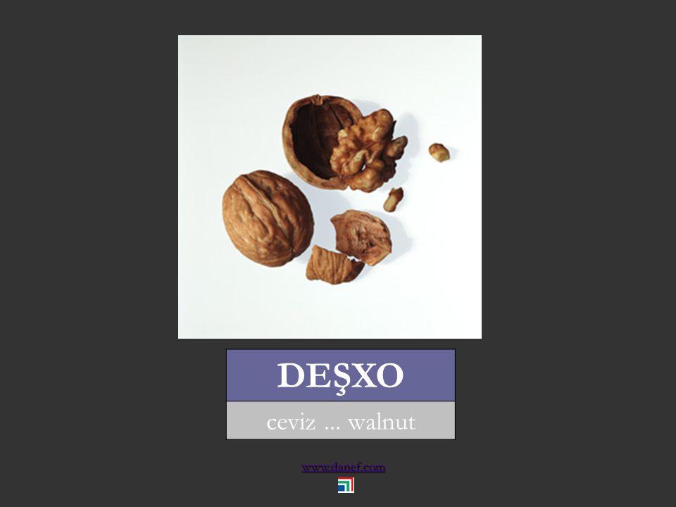 www.danef.com ĆIDE yerfıstığı... peanut