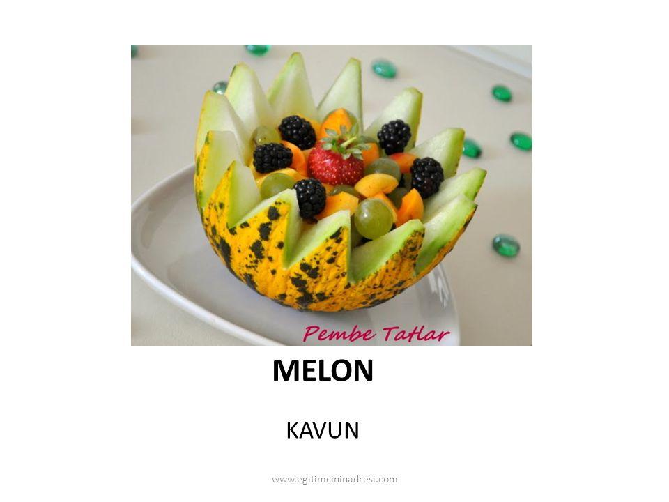 MELON KAVUN www.egitimcininadresi.com