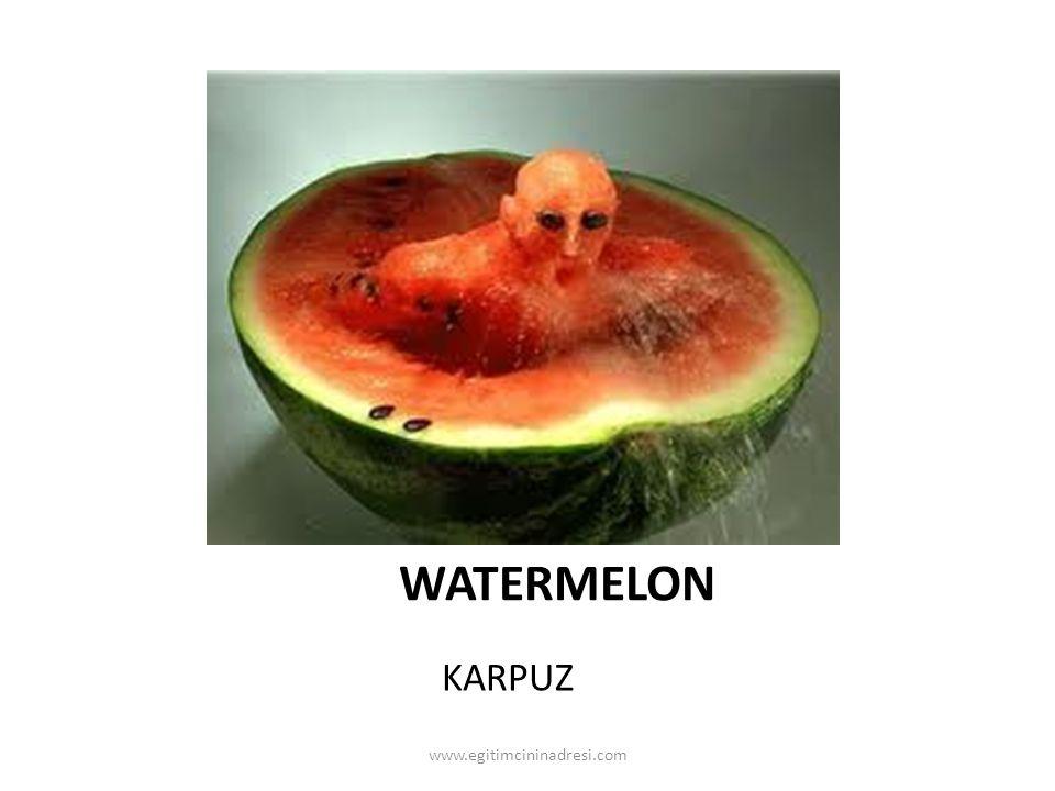 WATERMELON KARPUZ www.egitimcininadresi.com