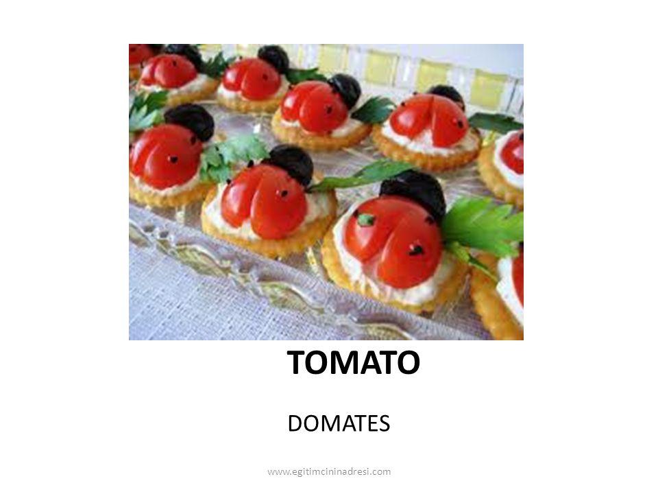 TOMATO DOMATES www.egitimcininadresi.com